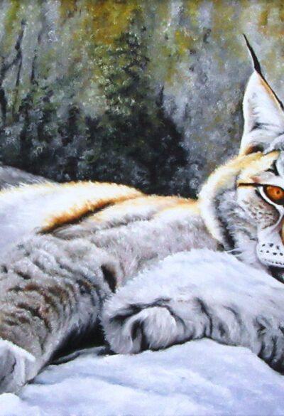 1 марта — Всемирный день кошек